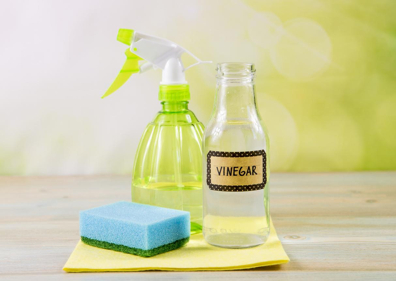 Dos limpiavidrios ecológicos: Elimina las manchas de forma natural -  Porlavisión