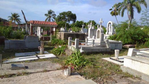 Realizan jornada de limpieza y recuperación del Cementerio Viejo de Los Robles