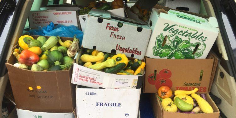 Entregarán alimentos gratuitos a venezolanos residentes en Estados Unidos