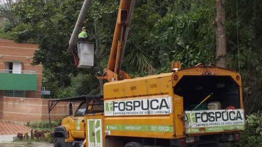 Denuncian que trabajadores de Fospuca destruyen árboles en La Esmeralda