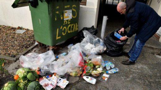 ONU: Habitantes del mundo desperdician 17 % de los alimentos que se producen