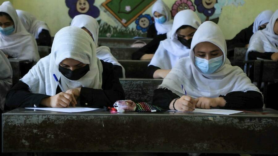 Talibanes anuncian que no habrá clases mixtas en las universidades de Afganistán