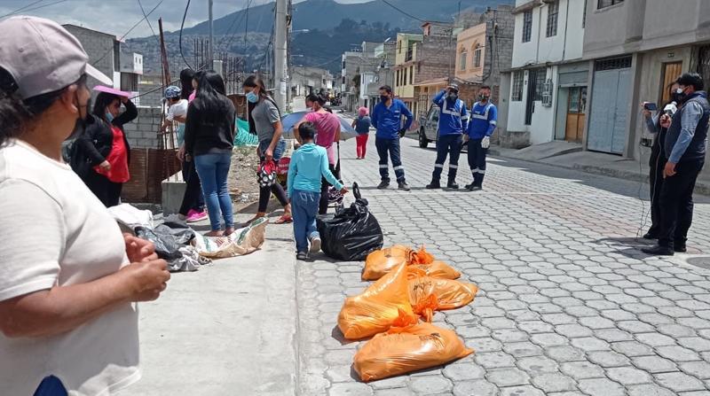 Hallan a 20 perros muertos en las calles de Quito